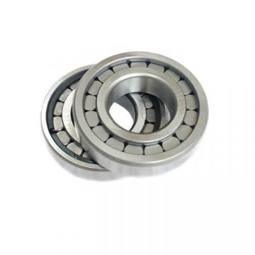 Toyana HK304014 Rolamentos cilíndricos